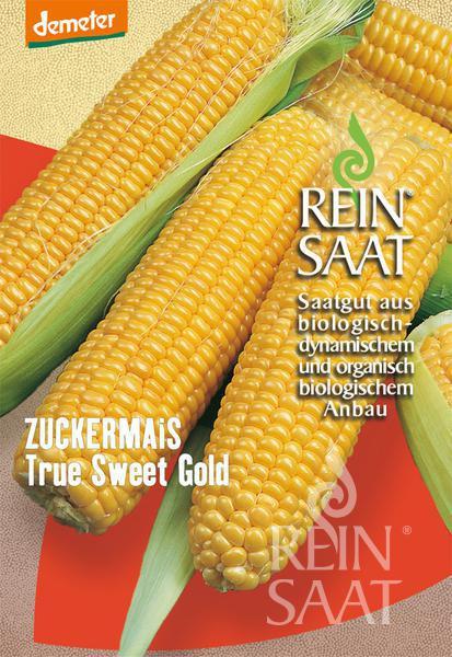 Bio Zuckermais True Gold Sweet Korn - Saatgut 80Stk.