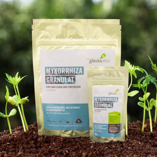 Mykorrhiza Pilz Granulat