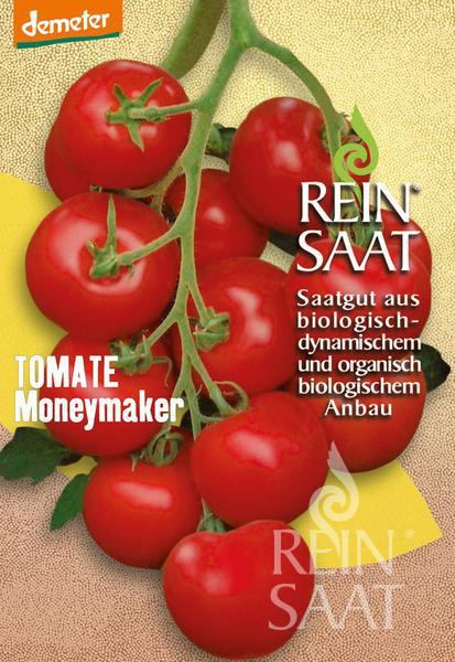 Bio Tomate Moneymaker Saatgut 40Stk.