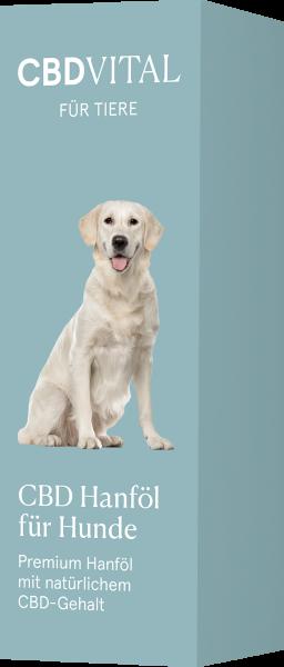 CBD Hanföl für Hunde 4,2% - 20ml